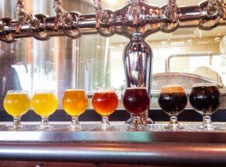 Beer Tasting Travel Bar
